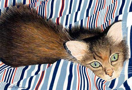 Kitten on the bed